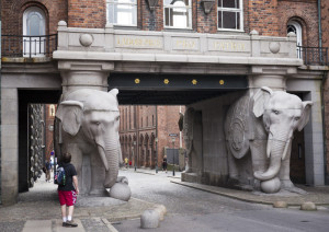 P1080541-Carlsberg-Elephants