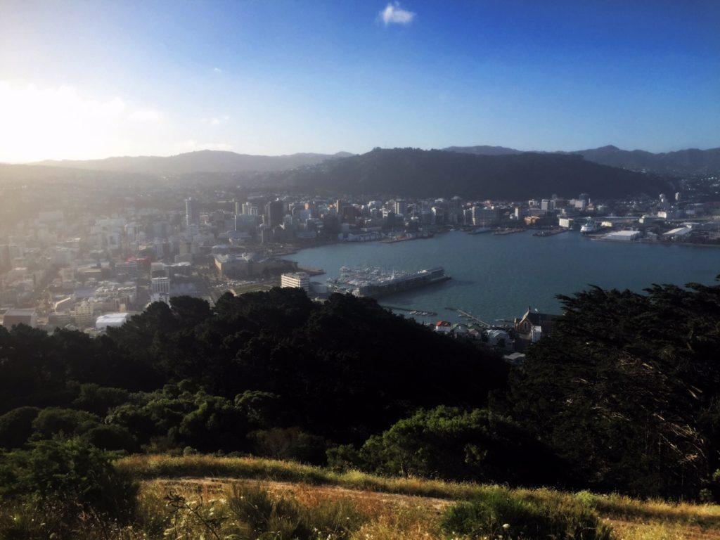 Wellington, New Zealand - NicoleLaBarge.com/Traveleira.com